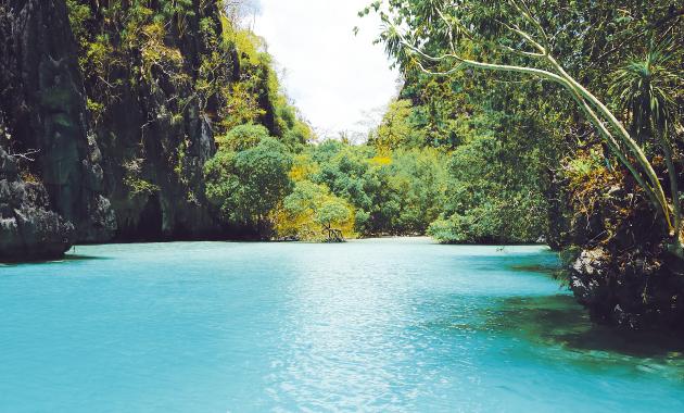 Pfilippines Travel story ダイビング編