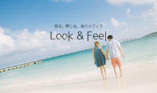Look & Feel